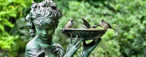 birds in the secret garden - birds in statue bird bath