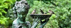 birds in the secret garden - birds in statue bird bath